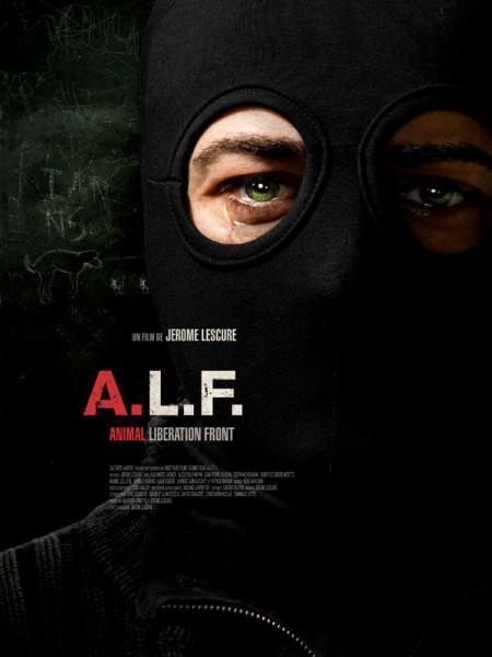 Cine974, A.L.F.