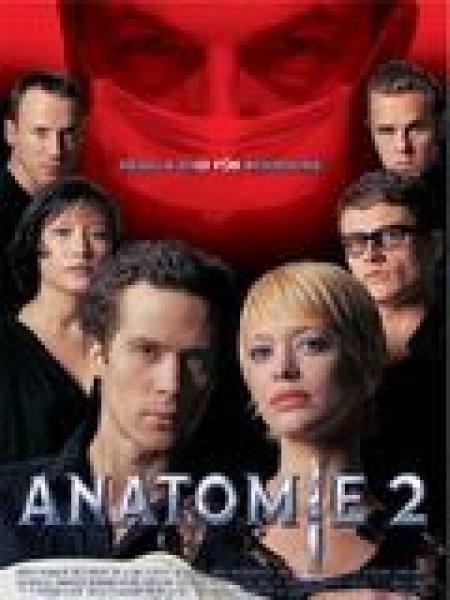 Cine974, Anatomie 2