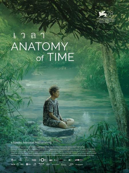 Cine974, Anatomy of Time