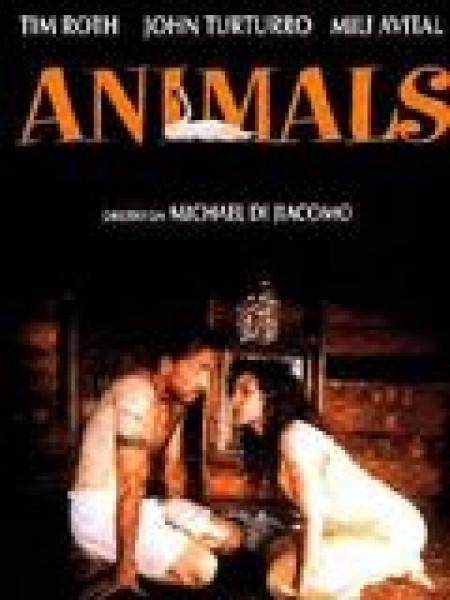 Cine974, Animals