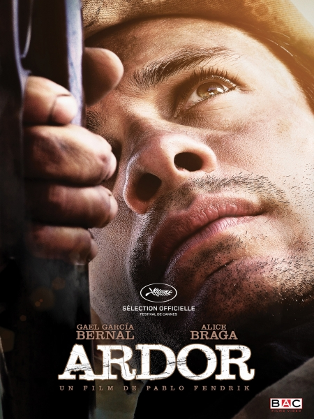 Cine974, Ardor