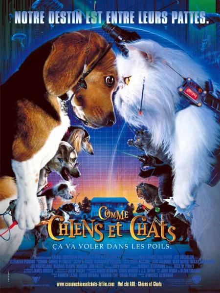 Cine974, Comme chiens et chats