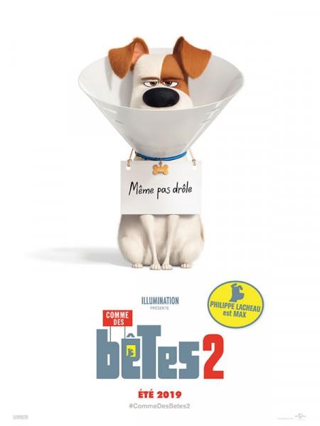Cine974, Comme des bêtes 2