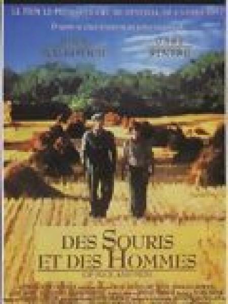 Cine974, Des souris et des hommes