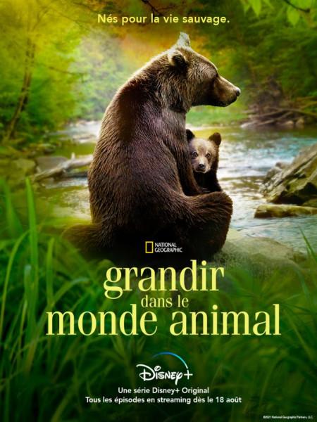 Cine974, Grandir dans le monde animal