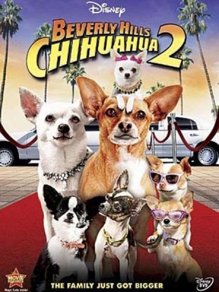 Cine974, Le Chihuahua de Beverly Hills 2