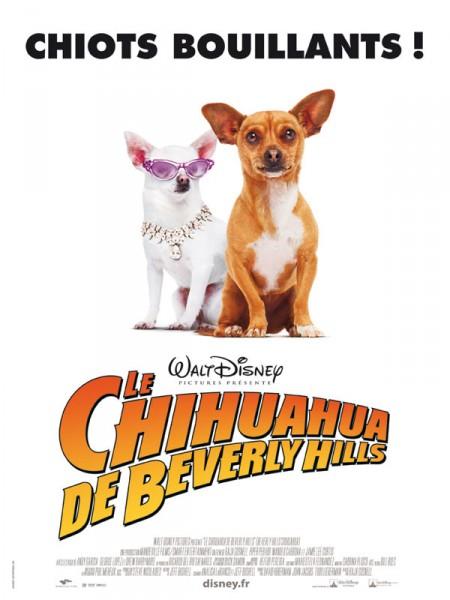 Cine974, Le Chihuahua de Beverly Hills