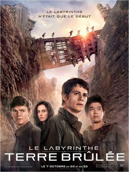 Cine974, Le Labyrinthe : La Terre brûlée