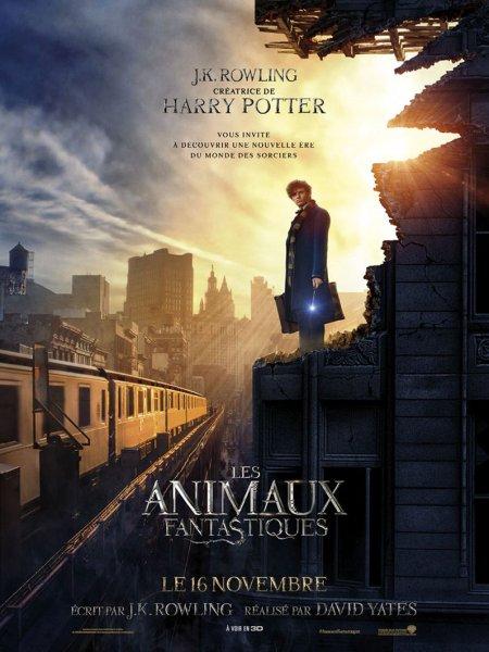 Cine974, Les Animaux fantastiques