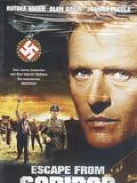 Cine974, Les Rescapés de Sobibor