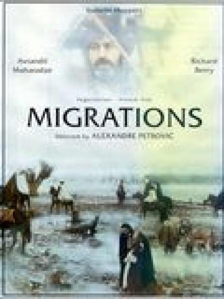Cine974, Migrations