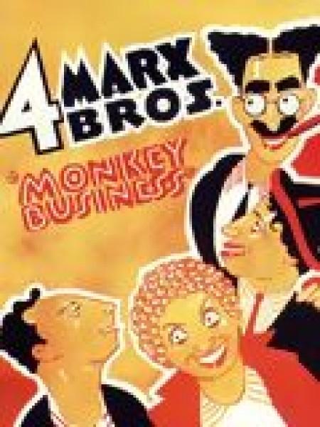 Cine974, Monnaie de singe