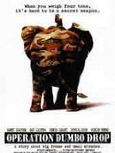 Cine974, Operation Dumbo Drop