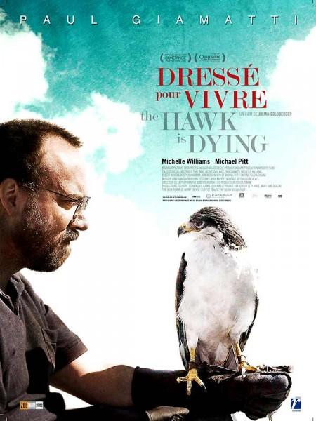 Cine974, The Hawk is Dying - Dressé pour vivre