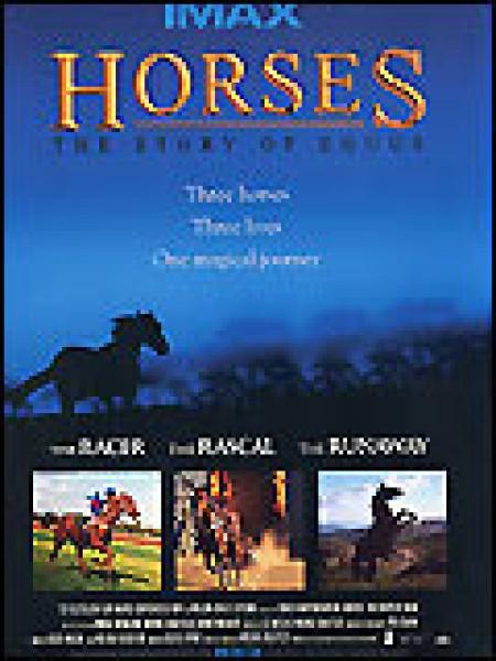 Cine974, Trois chevaux, trois destins