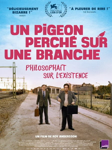 Cine974, Un pigeon perché sur une branche philosophait sur l'existence