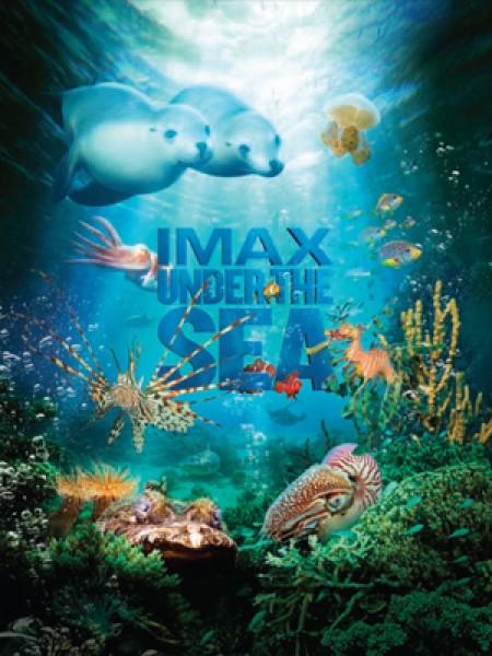 Cine974, Under the Sea