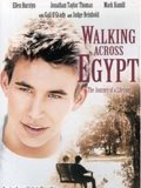 Cine974, Walking Across Egypt
