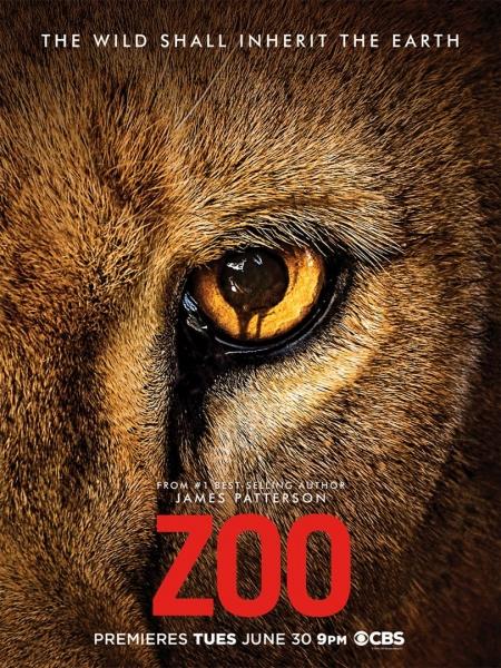 Cine974, Zoo
