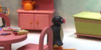 Pingu • Bande Annonce VO 2021
