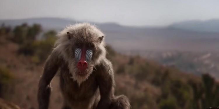 Découvrez la première bande-annonce de Le Roi Lion 2019