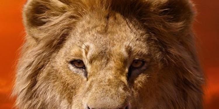 Le Roi Lion, en juillet au cinéma à La Réunion