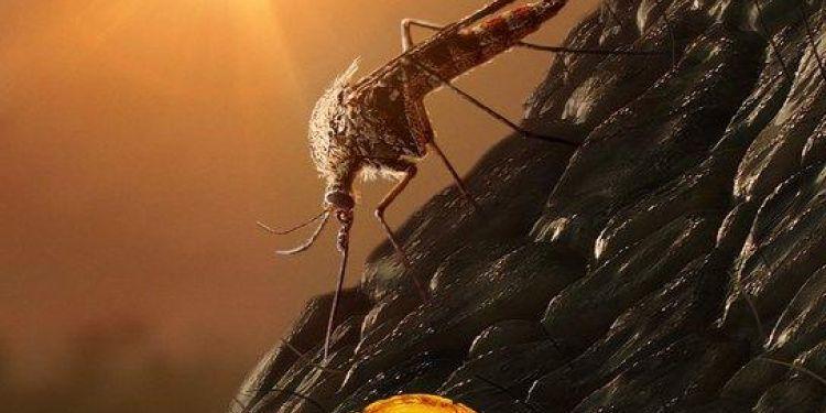 Bientôt un teaser de Jurassic World 3 avec de nouvelles espèces.