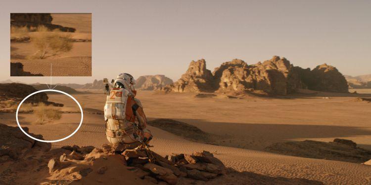 Seul sur Mars ? Pas exactement !