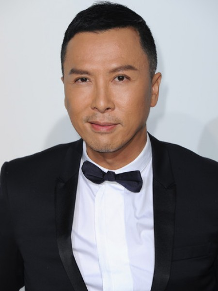 Donnie Yen, Cine974